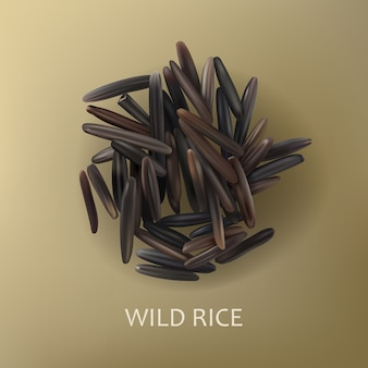 Grains of wild black rice