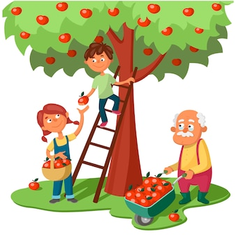 Grandchildren and grandfather harvest apples