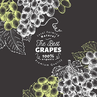 Grape berry design background. hand drawn vector fruit illustration on chalk board. engraved style retro botanical.