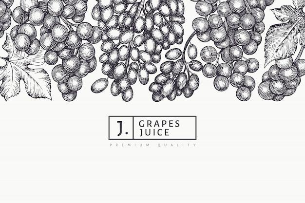 ブドウのデザインテンプレートです。手描きのグレープベリーのイラスト。刻まれたスタイルのレトロな植物バナー。