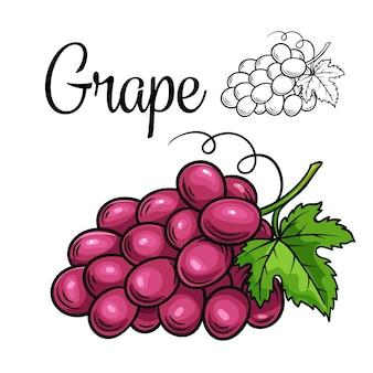 Значок рисования винограда