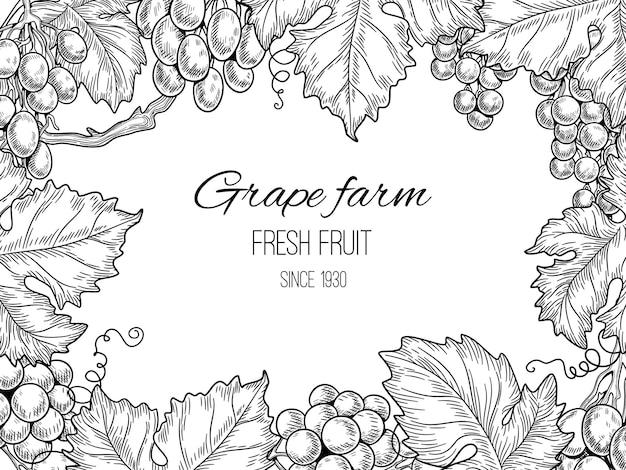 グレープフレーム。ブドウの木と葉を持つブドウ園のヴィンテージの背景。イラストファームグレープバイン