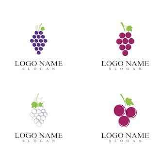 포도 과일 로고 및 기호 벡터
