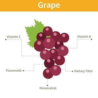 Виноградное питательное вещество фактов и польза для здоровья