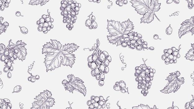 포도 패턴입니다. 덩굴 원활한 질감, 식물 및 잎. 포도원과 와인 원시 요소 벡터 배경을 스케치합니다. 그림 덩굴과 포도, 원활한 패턴 포도 덩굴