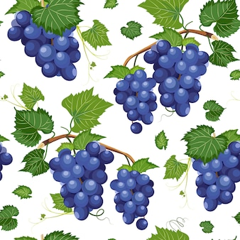 Grape vine seamless pattern and leaves