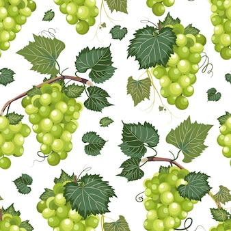 Grape vine seamless pattern