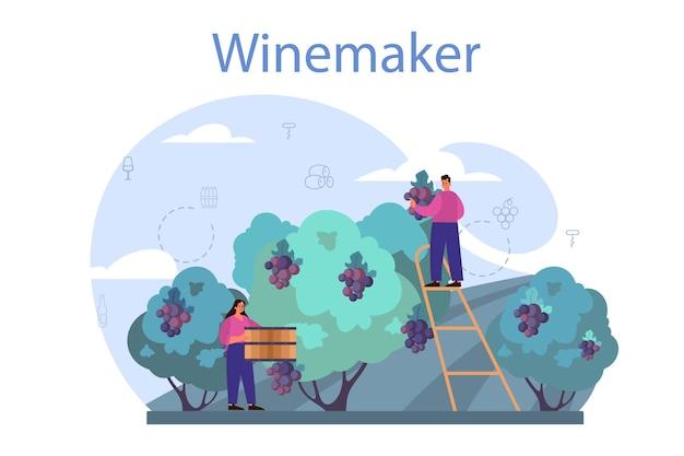 木製の樽でブドウのワイン