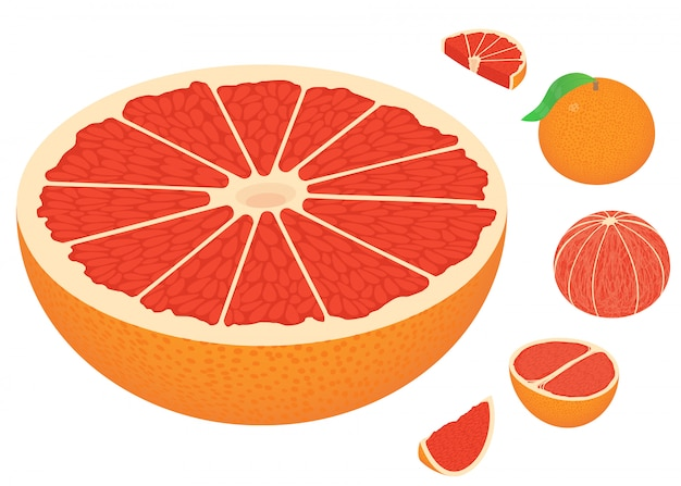 Grapefruit icons set, isometric style
