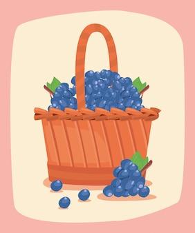 Grapes fresh fruit basket ilustration