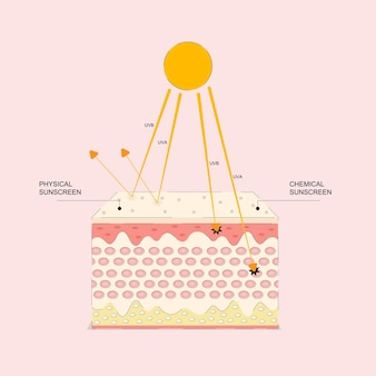Graphic animation uv protection for skin ultraviolet shield reflect