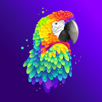 Graphic colorful parrot, macaw bird illustration