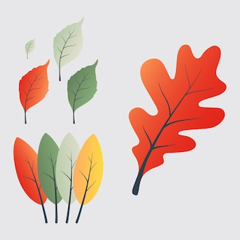 Graphic of set flat design autumn leaves vector illustration