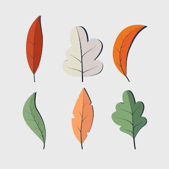 Graphic of set flat design colourful autumn leaves vector illustration