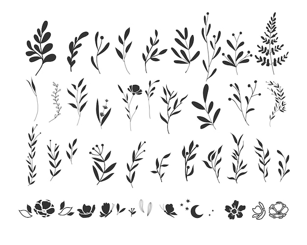 Графический набор веточек и веточек. ручной обращается силуэт растения