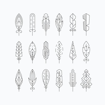 Graphical mono line feathers set. elements or linear signs. isolated.