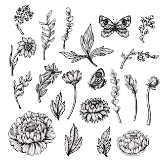 Graphical peonies and wild flowers