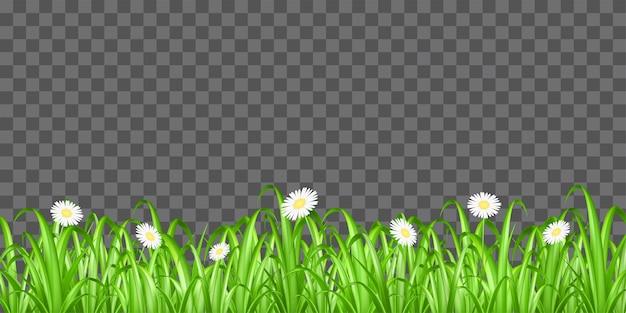 투명 한 배경 벡터에 잔디와 꽃