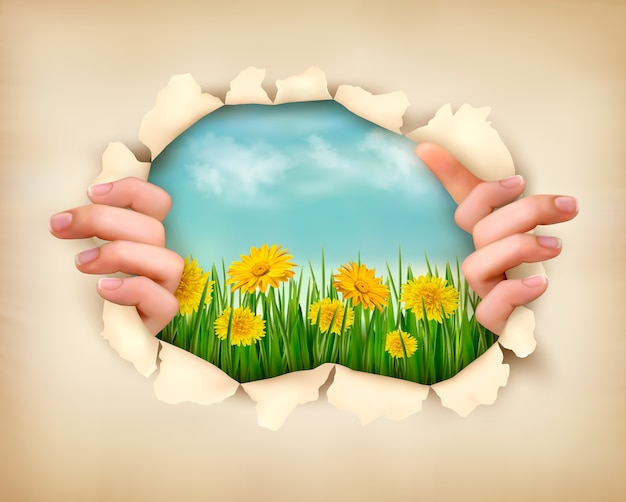 Трава, цветы и рваная бумага