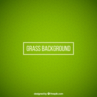 Grass background in abstract style
