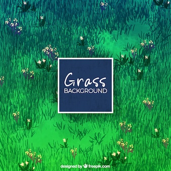 Sfondo erba con i fiori