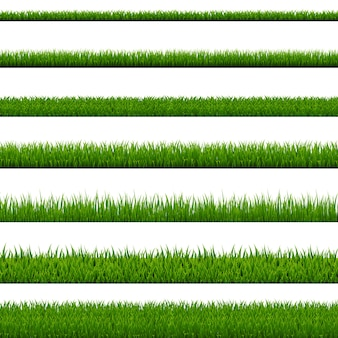 Grass border collection  white background