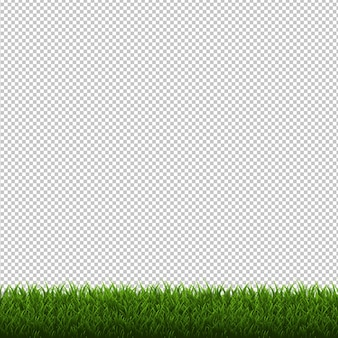 Grass border isolated transparent background,  illustration