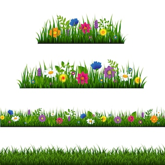 Grass border with flower collection isolated