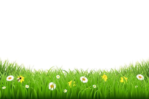 Граница травы с цветами с иллюстрацией градиентной сетки
