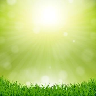 自然との草の境界