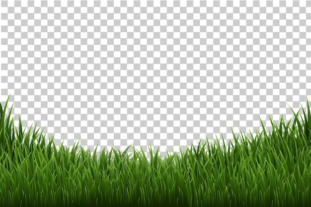Граница травы