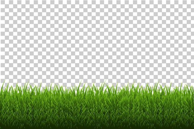 잔디 테두리