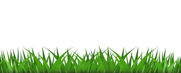 Grass borders plant illustration