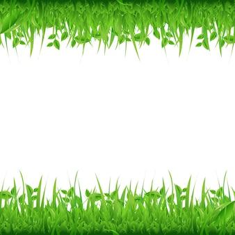 Границы травы