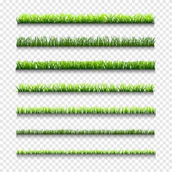 Grass, different types of green grass borders