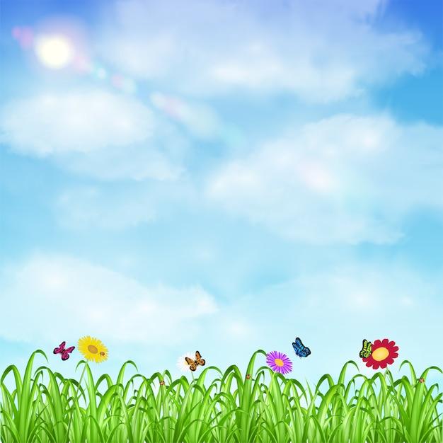 草の花と昆虫、空の背景