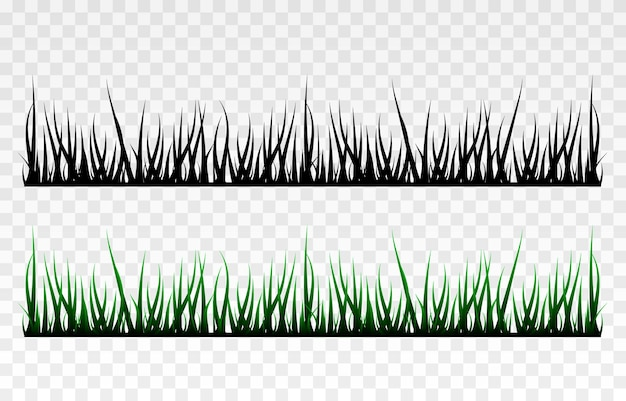 Grass grass lawn field young grass png