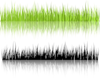 Grass illustrations with reflections