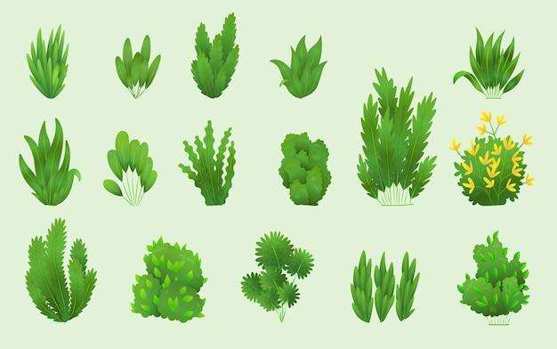 잔디 또는 덤불. 녹색 현실적인 봄 잔디입니다. 신선한 식물, 정원 식물 채소, 허브 및 잎 벡터는 흰색으로 분리되어 있습니다. 자연 잔디 초원 덤불의 다른 패턴입니다.
