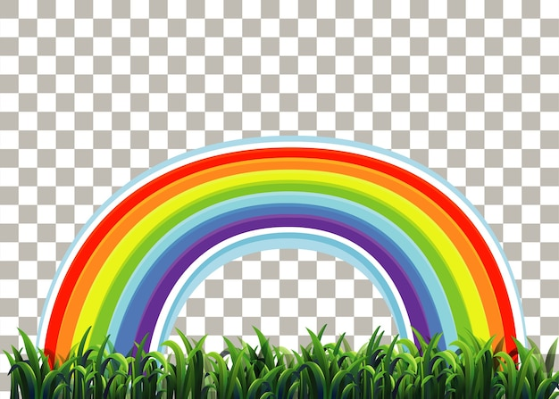 Grass and rainbow on transparent