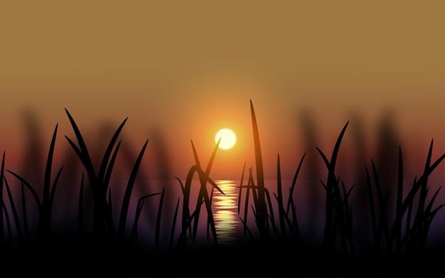 Трава силуэт закат пейзаж с отражением солнца на воде