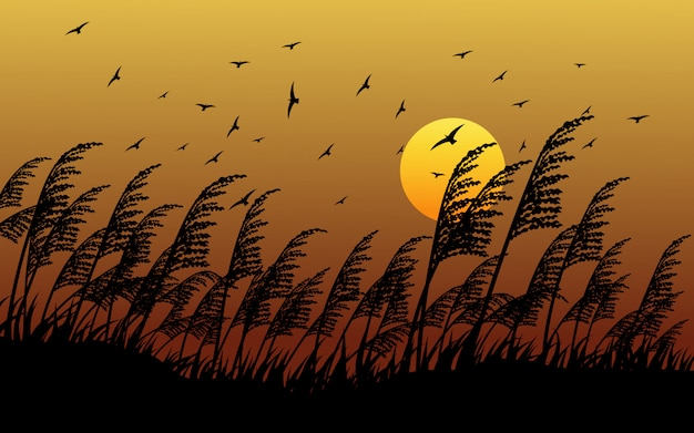 Grass silhouette in sunset with flying birds