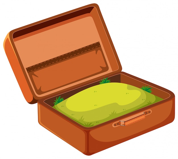 A grass in suitcase