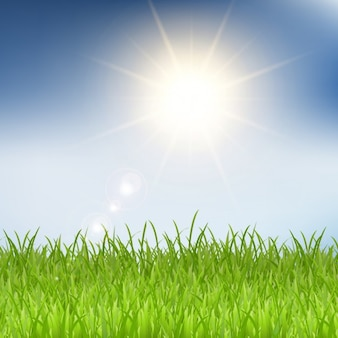 Grass and sunshine background