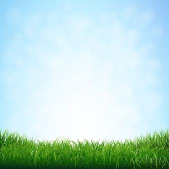 Трава с голубым небом с градиентной сеткой, иллюстрация