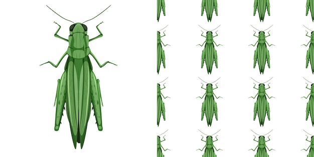 バッタ昆虫分離とシームレスパターン