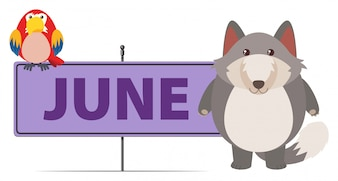 Gray fox and sign template for June
