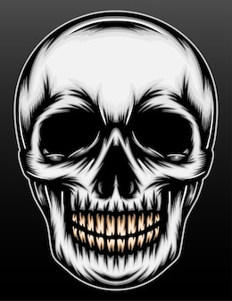 Gray skull head isolated on black