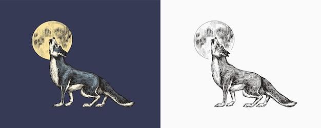육식 동물 짖는 회색 늑대와 달 야생 숲 동물 벡터 새겨진 손으로 그린