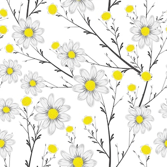 Grayscale bouquet chamomile seamless white background